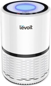 Best air purifier for mold: Levoit H13.